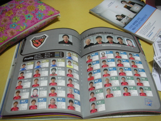 2003년포항스쿼드1.jpg : 2003년 크리그 구단들 스쿼드(출처-2003년 연맹 가이드북)