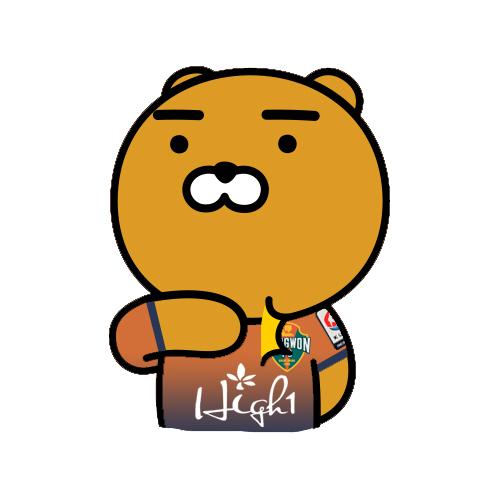 강원2017.jpg